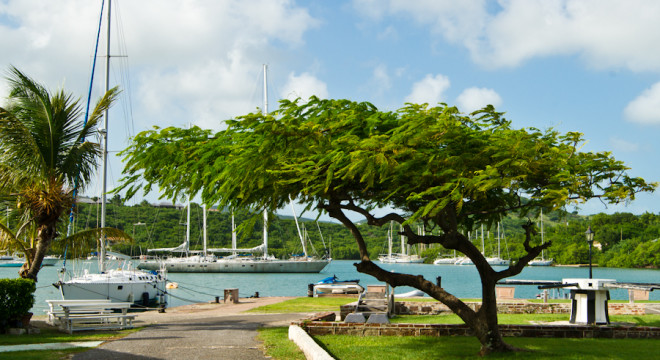 Harbour of Nelson's Dockyard, Antigua and Barbados