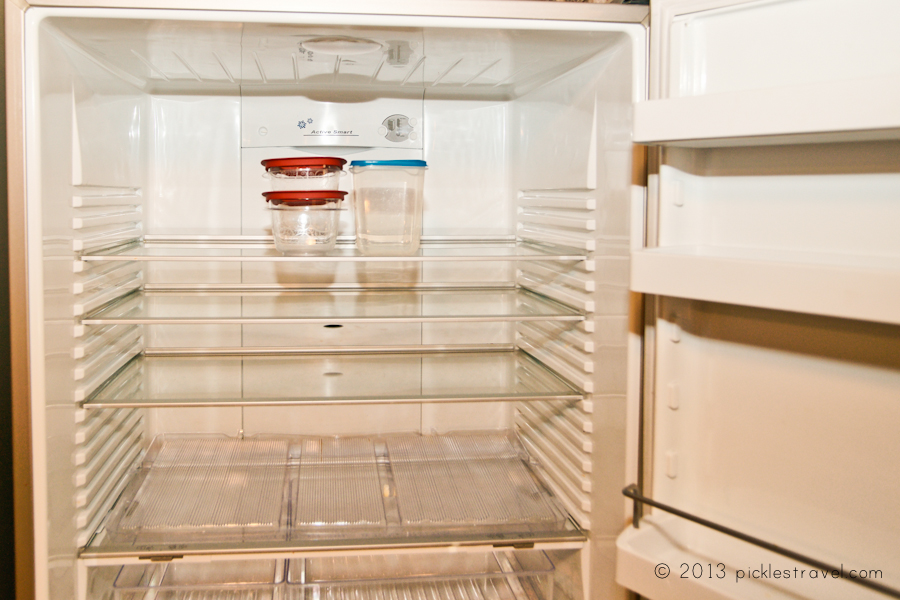 Leftovers in Empty Fridge