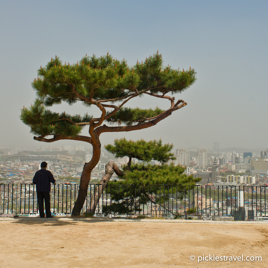 Overlooking Suwon