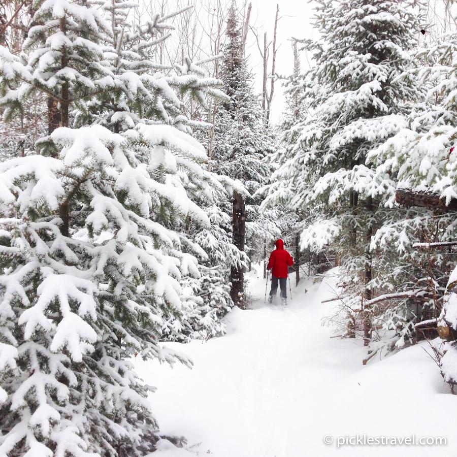 Fresh Snow fall on Pincushion