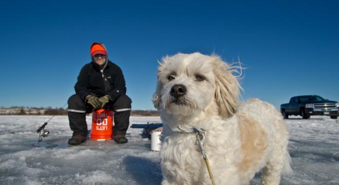 Pepper ice fishing on Lake Washington