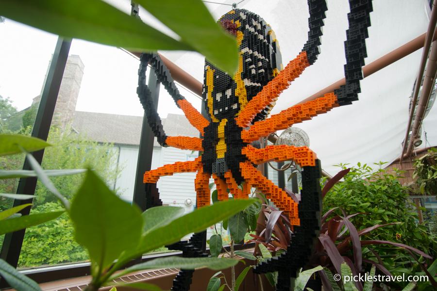 Giant Corn Spider