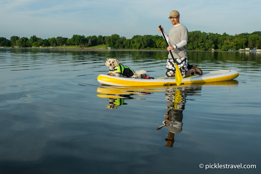 Dog at helm of C4 Waterman SUP