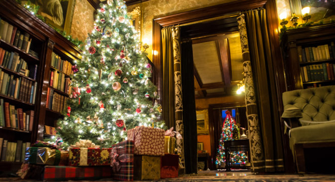 Trees Glensheen Mansion Christmas