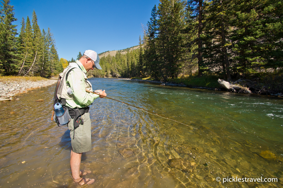 guided fly fishing the Gallatin River