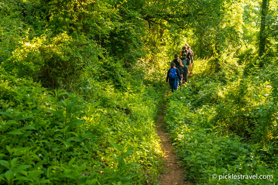 Hike and explore Wayne National Forest in Washington County