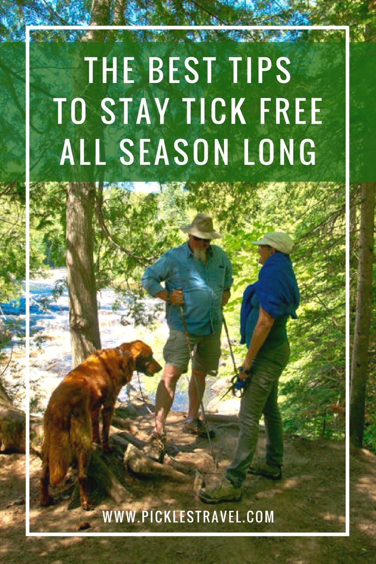 Wood ticks, deer ticks and other ticks carry scary diseases so it's important to know these tips to avoid getting bit when on any outdoors adventure. Stay tick free and you won't have to worry about Lyme Disease or other tick borne illnesses.