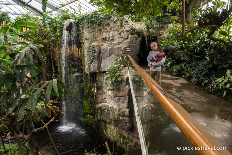 North America's Largest indoor rainforest