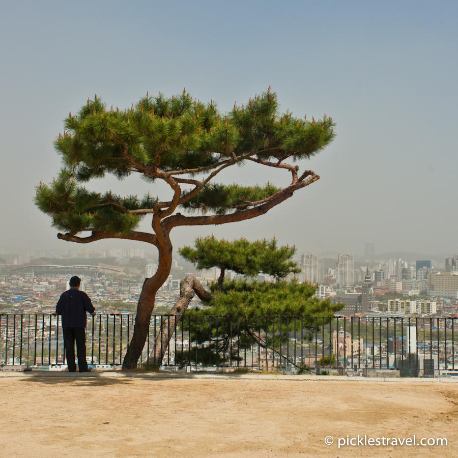 Overlooking Suwon