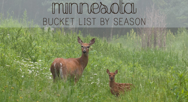Minnesota Bucket List by Season