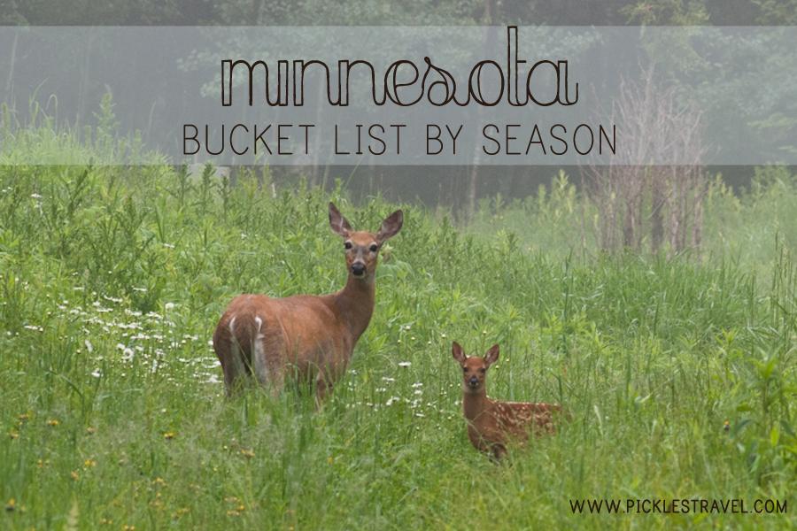 Minnesota Bucket List by Season