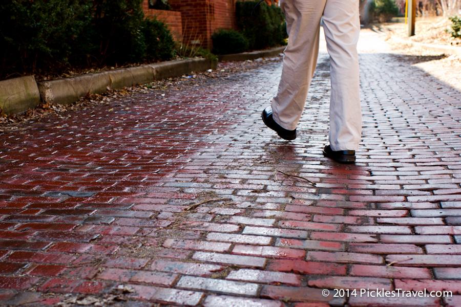 Taking a Stroll- why walking matters