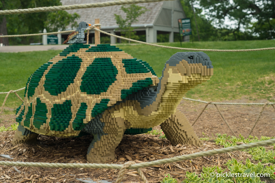 Galapagos Tortois & Finch: Nature Connects: Art with LEGO® Bricks