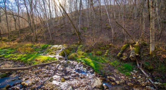 Beaver Creek Valley state park creek