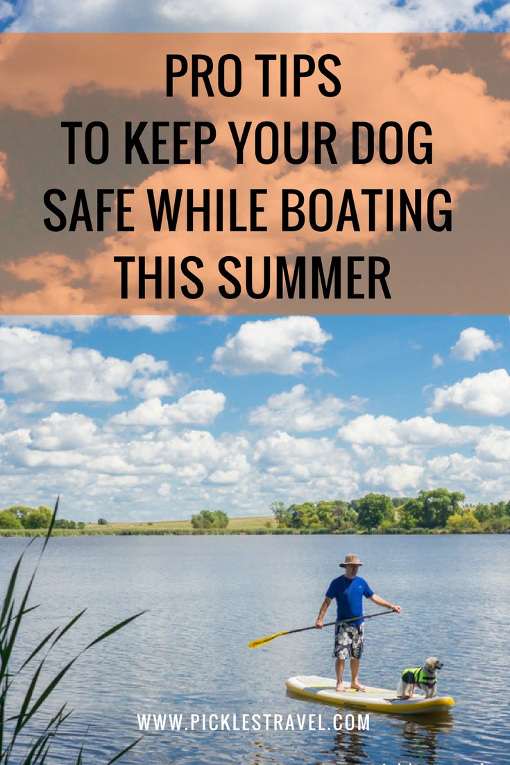 Tips for Dog Water Safety out on the lake and in the boat this summer as you travel with your adventure dog. Good ideas for clothing protection, life jackets and what to include in a first aid kit.